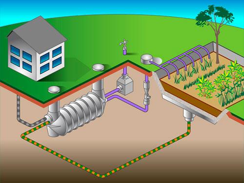 Схема работы технологии EcocyclET - очистка канализационных стоков при помощи растений