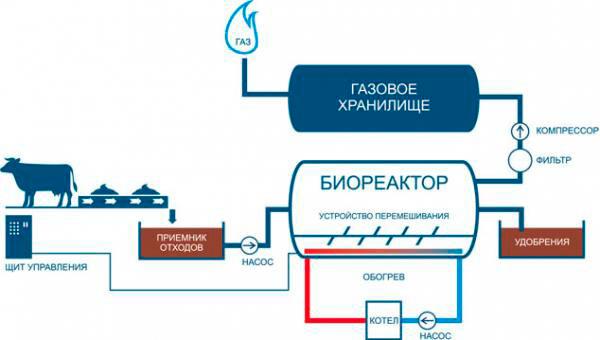 Технологическая схема переработки отходов животноводства в биогаз и ценные удобрения